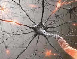 Сосудистые заболевания нервной системы