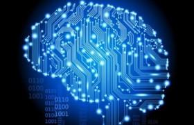 Творческие личности обладают особой схемой развития мозга