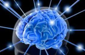 Мозгу, как выяснили ученые, нужен полноценный сон