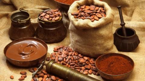 О вашей нервной системе позаботится какао