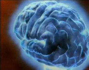 Как ухаживать за мозгом?