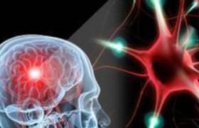 Аутологичные стволовые клетки могут помочь больным рассеянным склерозом