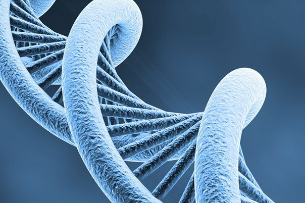 FDA ограничила назначение препаратов тестостерона