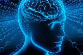 Признаки надвигающейся болезни Альцгеймера можно выявить уже в 20 лет