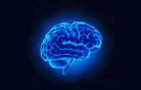 Открытие: мозг обрабатывает слова как изображения