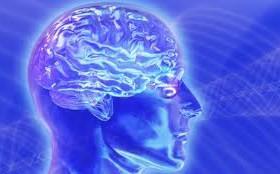 Открытие века: «мозговой жир» может стоять за болезнью Альцгеймера