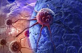 Противораковый препарат борется с болезнью Альцгеймера