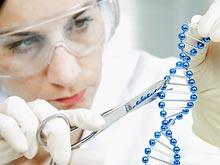 Эксперты нашли ген, связанный с накоплением амилоидных бляшек в мозге