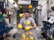 Исследователи изучают, как отсутствие гравитации влияет на мозг космонавтов