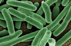 Аномалия гена ведет к увеличению риска метастазов в печени