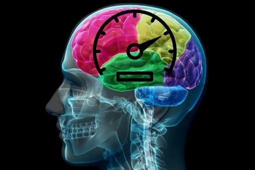 Ученые нашли спидометр в головном мозге