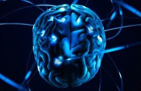 Сканирование мозга подскажет, насколько хорошо человек распознает лица и объекты