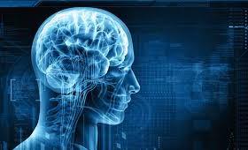 Ученые обнаружили область головного мозга, отвечающую за заикание