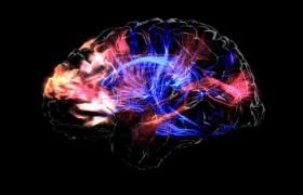 Как мозг распознает опасность