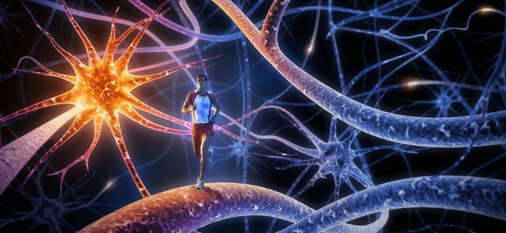 Как жить с эпилепсией