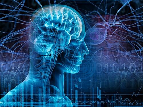 Хроники хроника: эпилепсия