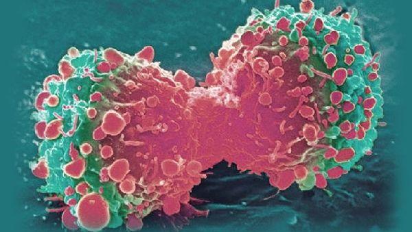 Уникальный имплантат спасает от болезни Альцгеймера
