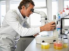Исследователи обнаружили белки, которые помогут победить рак и деменцию