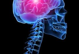 Питание для улучшения мозгового кровообращения