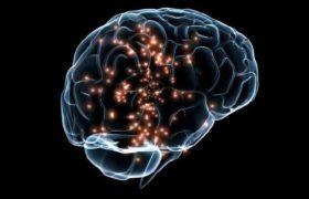 Ученые исследовали мозг под ЛСД