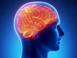 Медики разработали новый способ, восстанавливающий функции мозга