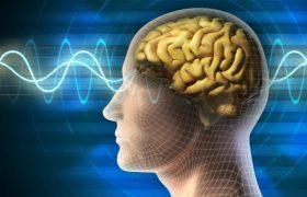 Назван самый опасный для мозга продукт