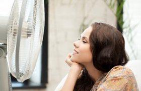 Как заставить мозг работать в жару