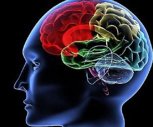 Трудоголизм может стать причиной развития слабоумия