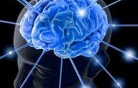 Питание для улучшения работы мозга