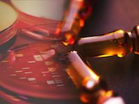 AstraZeneca и Eli Lilly получили право на ускоренную регистрацию препарата против болезни Альцгеймера