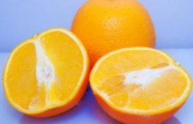 Аминокислоты: их свойства и роль в организме