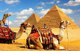 Египет в осенне-зимний — вперед на Красное море!