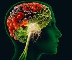 15 продуктов, особенно полезных для мозга