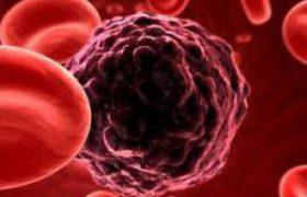 Ученые разгадали маскировку бактерий менингита