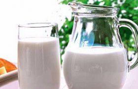 Исследователи объяснили пользу молока для мозга