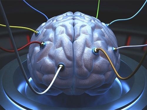 Ученые рассказали, какие регионы мозга отвечают за заикание