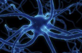 Прорыв в исследовании болезни Паркинсона: ученые обещают новое лекарство