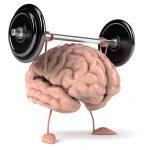 Что может обратить процесс старения мозга вспять?