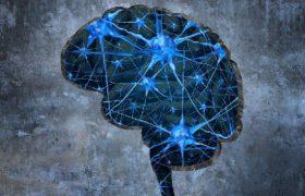 Иммунотерапия – потенциальное средство от болезни Альцгеймера