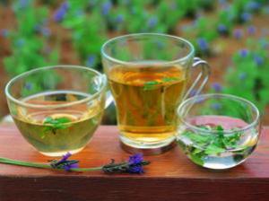 Зеленый чай спасает от старческого слабоумия