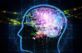 9 интеллектов вместо одного: на что способен каждый человек?