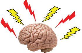 Природный химикат помогает мозгу адаптироваться к стрессу