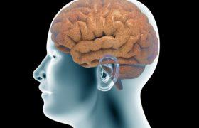 Четырехмесячная энцефалограмма — без ограничений подвижности для пациента