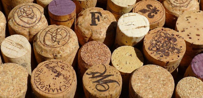 Ученые выяснили, почему вино полезно для мозга
