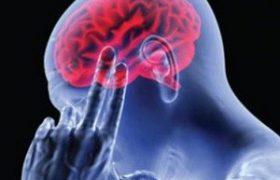 4 доступные натуральные средства для профилактики и лечения инсульта