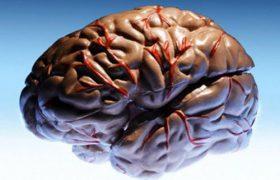 Эксперты: эпилепсия – не приговор