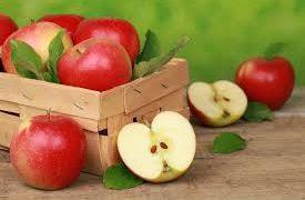 Яблоки могут защитить сосуды от атеросклероза