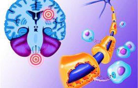 Терапия рассеянного склероза