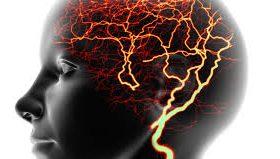 Селфи могут вызывать эпилепсию