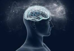 Физическая активность может увеличить размер мозга